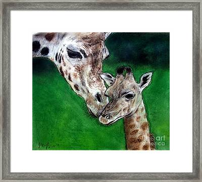 Mother And Baby Giraffe Framed Print by Jim Fitzpatrick