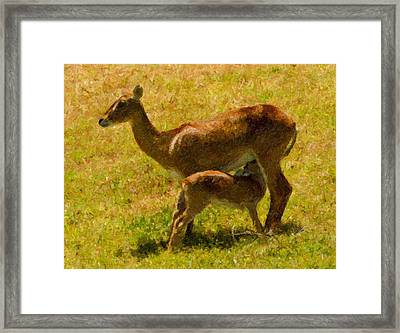 Mother And Child Framed Print by Angela Stanton