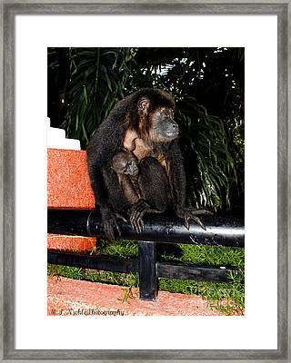 Mother And Child Framed Print by Melissa Nickle