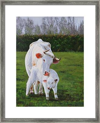 Mother And Her Calf Framed Print by Lepercq Veronique