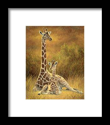Giraffe Framed Prints
