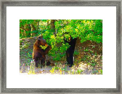 Mother Bear And Cub Framed Print by Jeff Swan