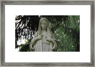 Mother Mary Framed Print by Michael Sokalski