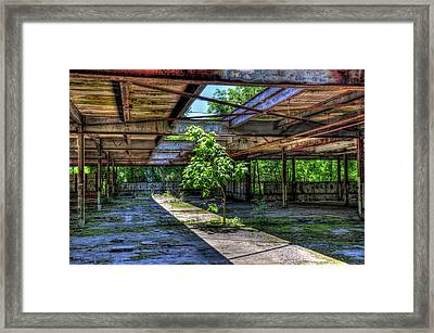 Mother Nature Finds A Way Framed Print by Karl Barth
