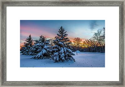 Mother Nature Is The Best Decorator Framed Print