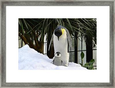 Mother Penguin And Baby Framed Print by Jeannie Rhode