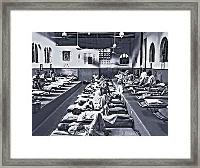 Mother Theresa's Framed Print by Steve Harrington