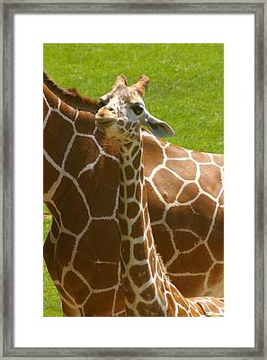 Mother's Child Framed Print
