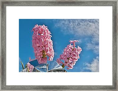 Mothers Day Duo. Framed Print by Geoff Childs