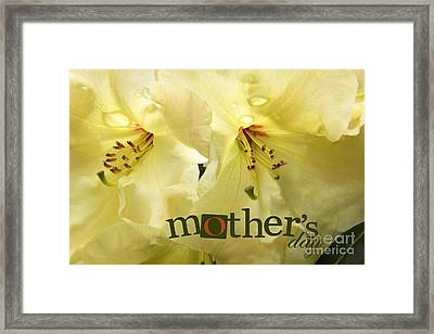 Framed Print featuring the photograph Mothers Day by Jean OKeeffe Macro Abundance Art