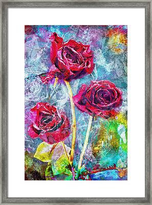Mothers Day Rose Framed Print