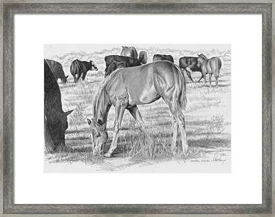 Mother's Shadow Framed Print by Don Dane