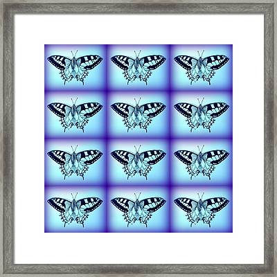 Moths Framed Print by Cathy Jacobs