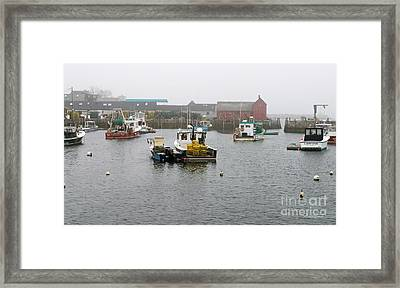 Motif No. 1 On A Foggy Day In May Framed Print by Michelle Wiarda
