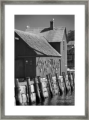 Motif Number One Bw Black And White Rockport Lobster Shack Maritime Framed Print