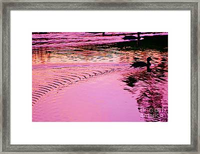 Mottled Duck Silouhette Framed Print by Lynda Dawson-Youngclaus