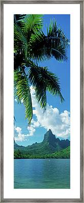Mouaroa Peak Over, Opunohu Bay, Moorea Framed Print by Panoramic Images