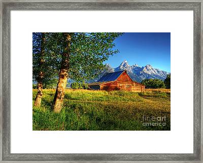 Moulton's Barn 3 Framed Print by Mel Steinhauer
