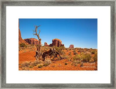 Moument Valley And Tree Stump Framed Print by Jane Rix