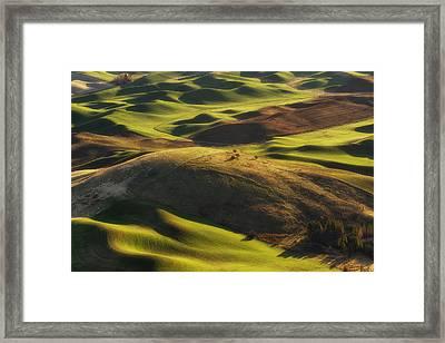 Mounds Of Joy Framed Print by Ryan Manuel