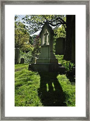 Mount Auburn Backlight Framed Print