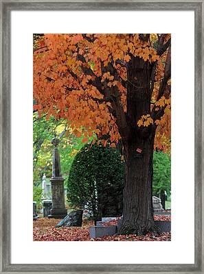 Mount Auburn Cemetery - Cambridge - Massachusetts Framed Print