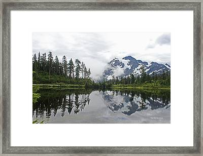 Mount Baker- Lake- Fir Trees And  Fog Framed Print
