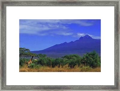 Mount Kilimanjaro Framed Print by Babak Tafreshi