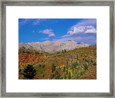Mount Nebo Scenic Byway Framed Print by Howie Garber