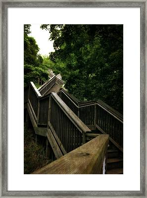 Mount Pisgah Stairs Framed Print by Michelle Calkins