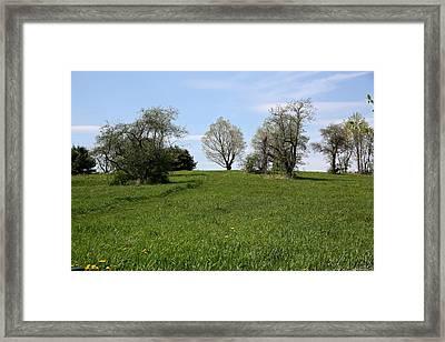 Mount Pollux Framed Print