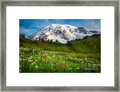 Mount Rainier Flower Meadow Framed Print by Inge Johnsson