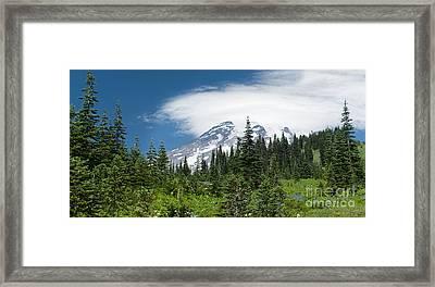 Mount Rainier Forest Framed Print
