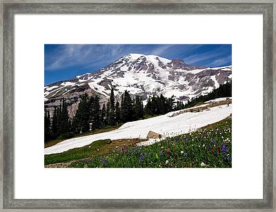 Framed Print featuring the photograph Mount Rainier From Paradise by Bob Noble Photography