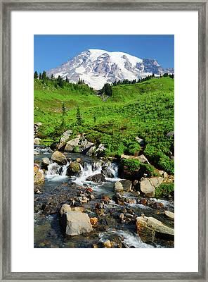 Mount Rainier From Paradise Framed Print
