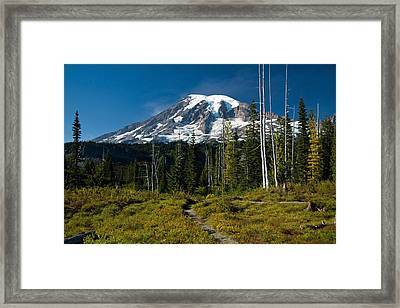 Framed Print featuring the photograph Mount Rainier From Snow Lake Trail by Bob Noble Photography