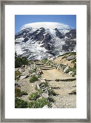 Mount Rainier Trail Framed Print
