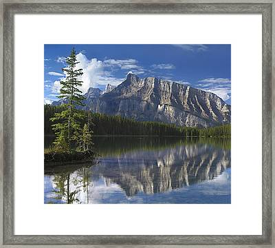 Mount Rundle And Johnson Lake Banff Framed Print by Tim Fitzharris