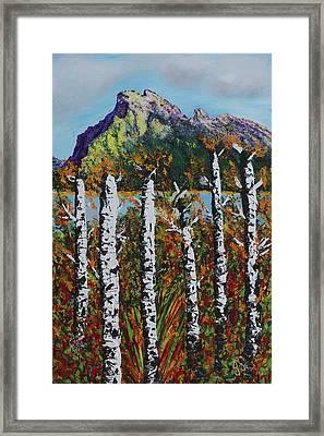 Mount Rundle Banff Alberta Framed Print by Joyce Sherwin