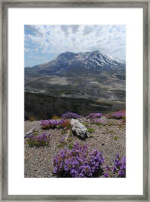 Mount Saint Helen's In Summer Framed Print by Robert  Moss