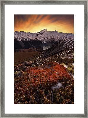 Mount Sefton Framed Print