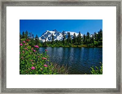 Mount Shuksan And Highwood Lake Framed Print by Dan Mihai