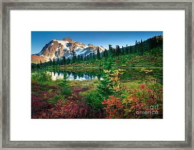 Mount Shuksan Fall Cornucopia Framed Print