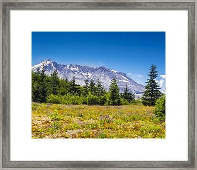 Mount St. Helens Framed Print