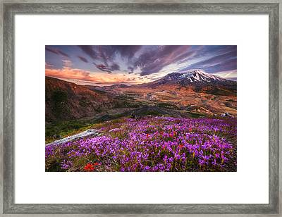Mount St Helens Lives On Framed Print by Darren  White