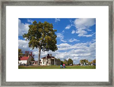Mount Vernon Day Framed Print by Terry Rowe