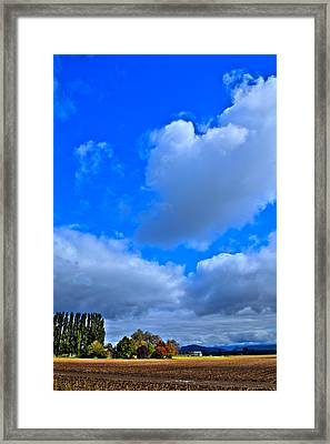 Mount Vernon Farm In Washington State Framed Print by David Patterson