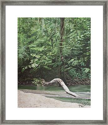 Mountain Adventure Framed Print