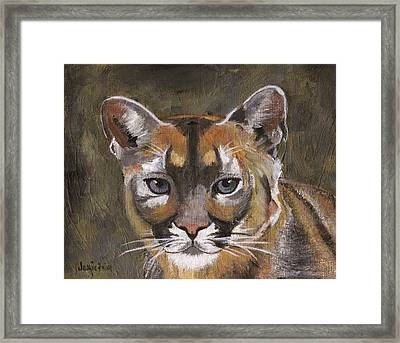 Mountain Cat Framed Print by Jamie Frier