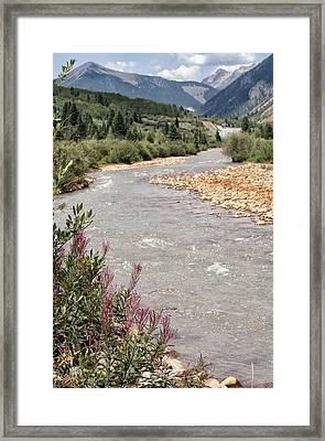Mountain Creek Framed Print by Melany Sarafis